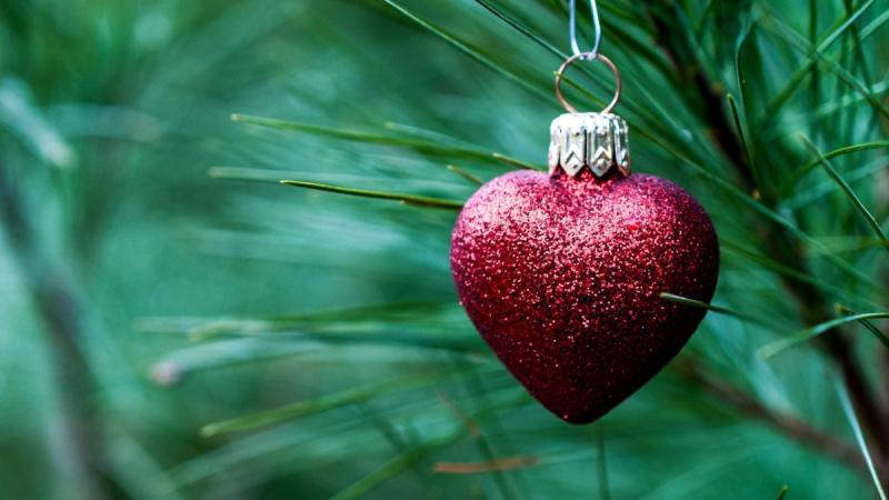 Ставим елку по феншуй и привлекаем в дом удачу, счастье, финансовое благополучие