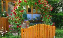 Милая арка из роз) Идеи цветоводам