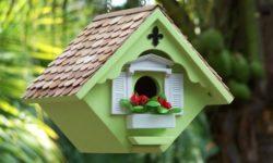 Необычные птичьи домики. Идеи