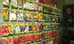 Покупка семян: несколько советов новичкам от опытных садоводов