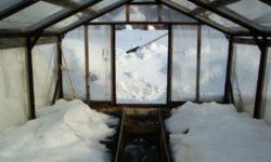 Обязательно ли нужно бросать снег на землю в теплице?