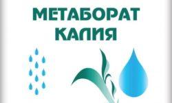 Калий метаборат (метаборат калия)