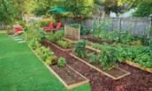 6 важных принципов при обустройстве огорода