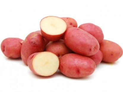 Ранний картофель: выбираем самые урожайные сорта