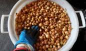 Эффективная обработка лука-севка от болезней и вредителей перед посадкой.
