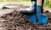 Почему не стоит перекапывать землю в огороде ни весной, ни под зиму.